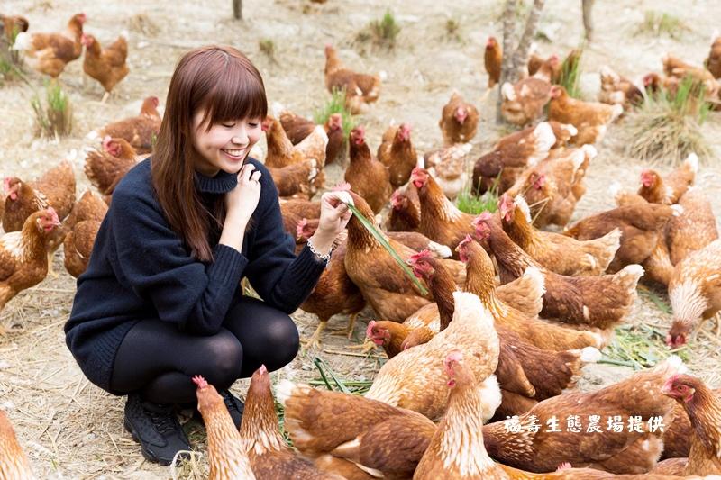 輕旅行|福壽生態農場|人道飼養‧友善畜產雙重認證‧牧草豬、牧草雞、牧草好吉蛋吃的更安心 @penny小食光輕旅行